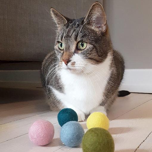 Ullbollar till katten